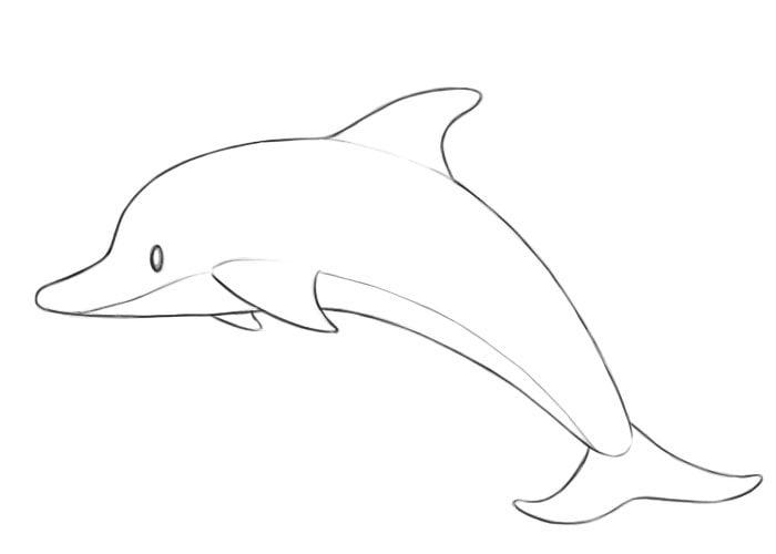 Как нарисовать дельфина для детей