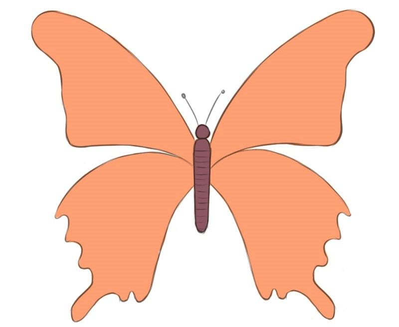 Как очень легко нарисовать бабочку