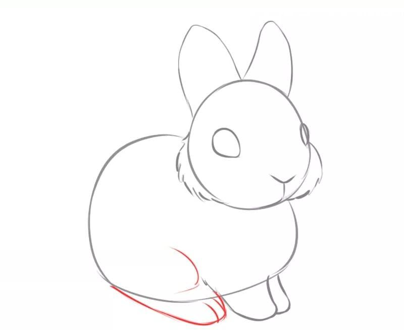 Как нарисовать зайчика для детей