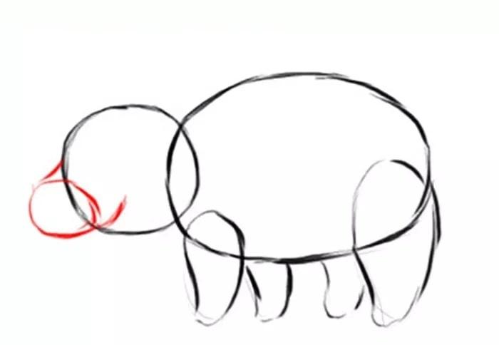 Как нарисовать поросенка для детей